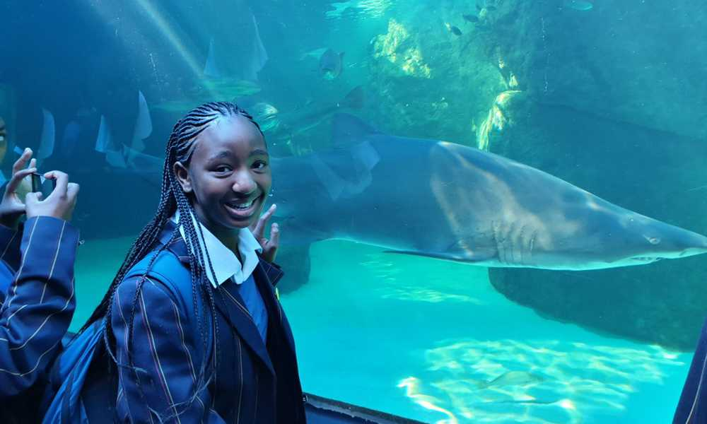 EXCURSION Trip to the Aquarium Grade 8 2019